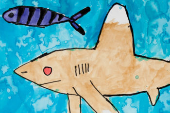 Shark water colour painting