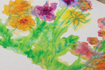 Watercolour Cotton Boards